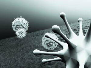 Zur Abwehr von Viren und anderen Keimen setzt das Immunsystem eine Armada spezifischer Zellen ein, wie Leukozyten und Lymphozyten.