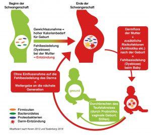 Übertragung der bakteriellen Fehlbesiedelung des Darms von Mutter auf Kind
