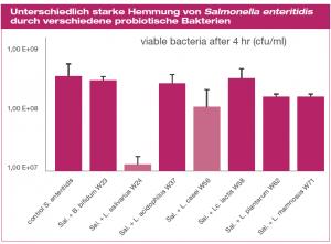 Jeder Darmsymbiont hat unterschiedlich stark hemmende Effekte auf pathogenen Keime (hier: Salmonella enteritidis)